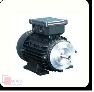 Electric motor – Sepid kala Energy Engineering Co